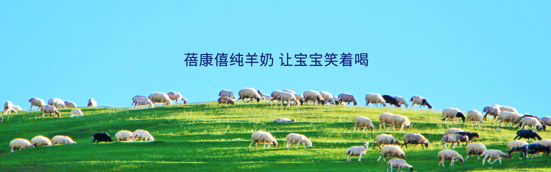 世界好羊奶